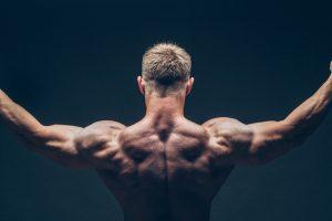 Простые комплексы на каждую группу мышц